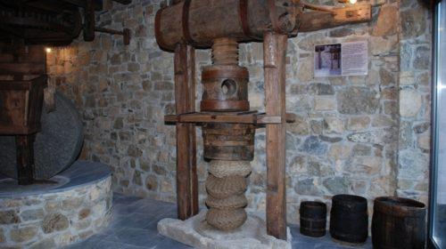 Museo delle Eccellenze – Cooperativa Olivicoltori Sestresi