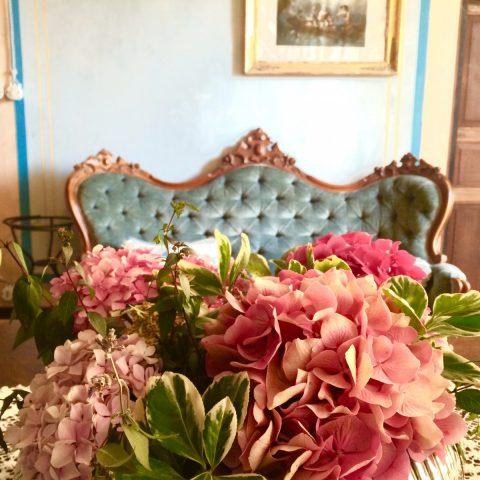 image - Casa Olivieri (9)