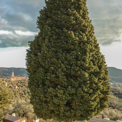 Località San Bartolomeo